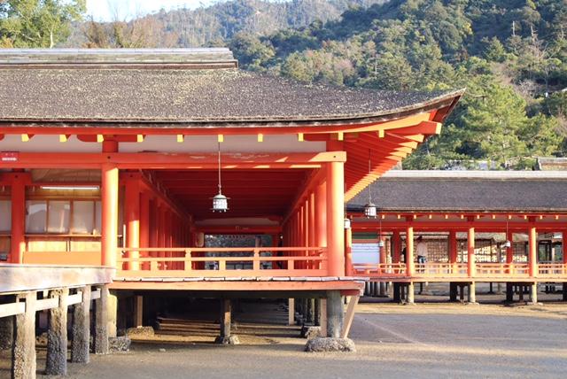 f:id:aqura-tsukuba:20170616104147j:plain