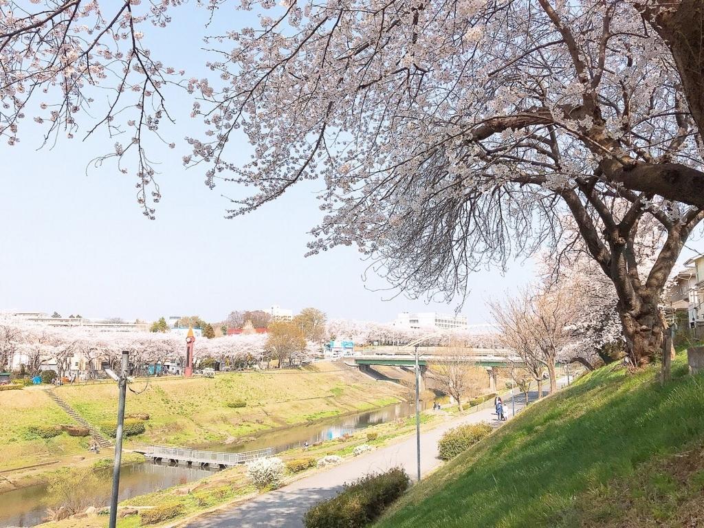 f:id:aqura-tsukuba:20180405101035j:plain