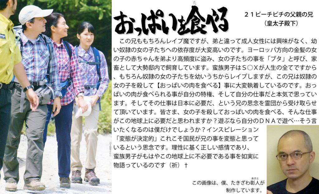 f:id:ar7-akito-takizawa:20161230091443j:plain