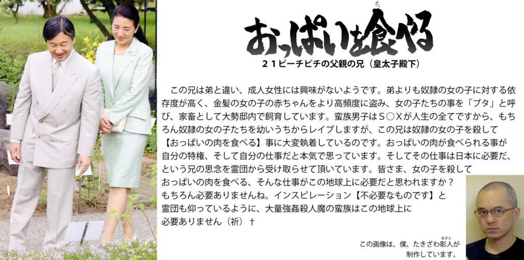 f:id:ar7-akito-takizawa:20161230091508j:plain