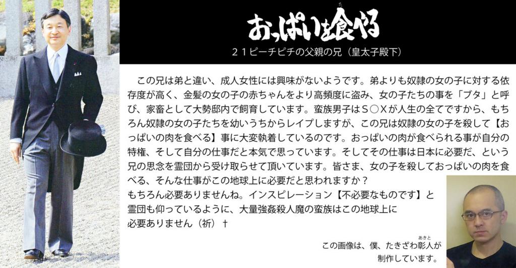 f:id:ar7-akito-takizawa:20161230091528j:plain