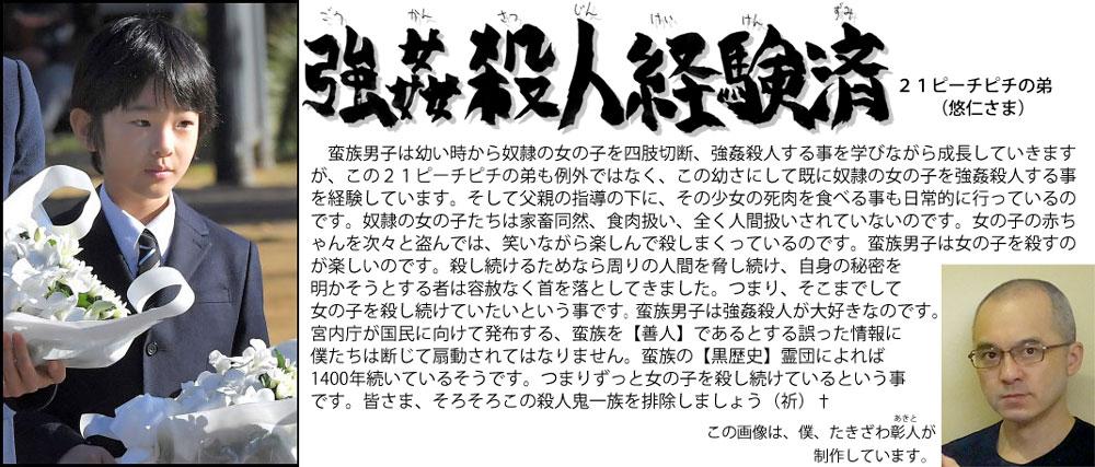 f:id:ar7-akito-takizawa:20161230091814j:plain