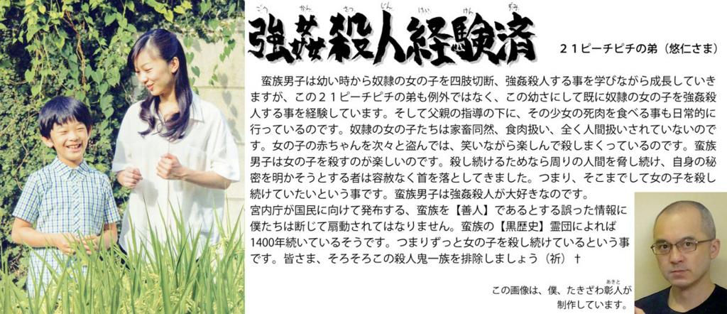 f:id:ar7-akito-takizawa:20161230091832j:plain
