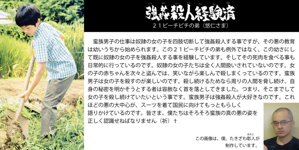 f:id:ar7-akito-takizawa:20161230091906j:plain