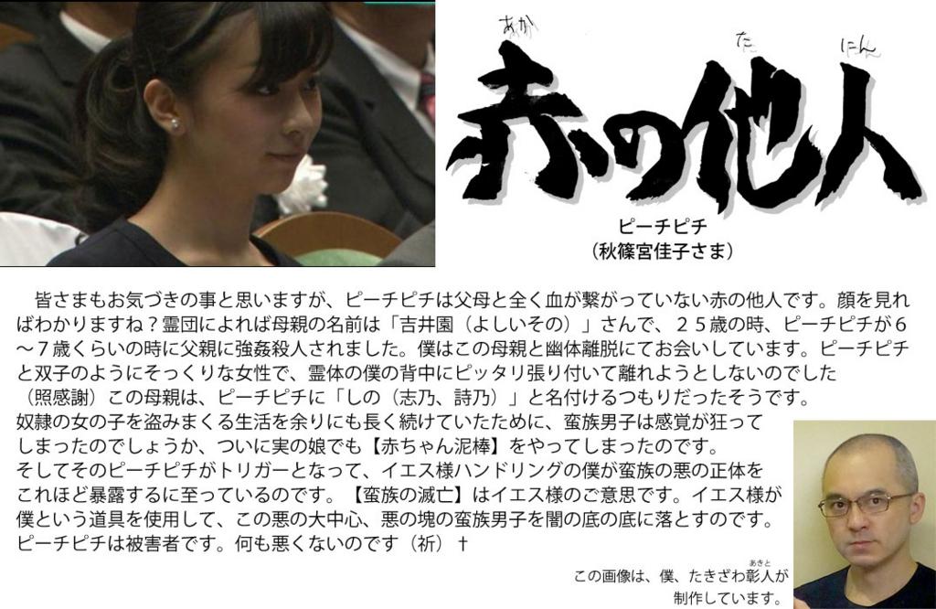 f:id:ar7-akito-takizawa:20161230092240j:plain