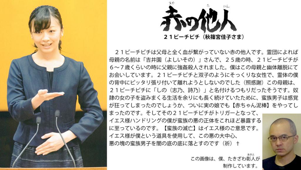 f:id:ar7-akito-takizawa:20161230092320j:plain