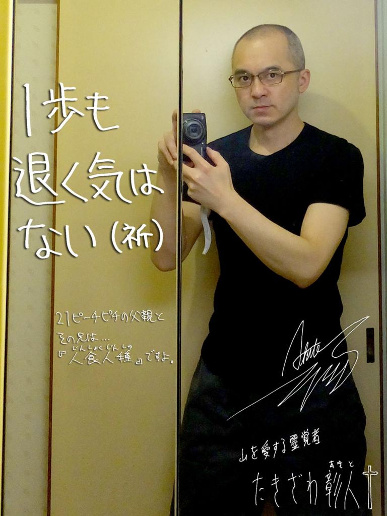 f:id:ar7-akito-takizawa:20170111062531j:plain