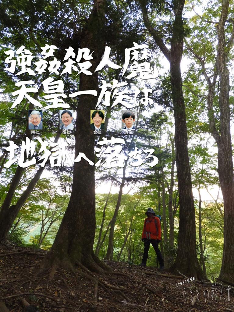 f:id:ar7-akito-takizawa:20170317095501j:plain