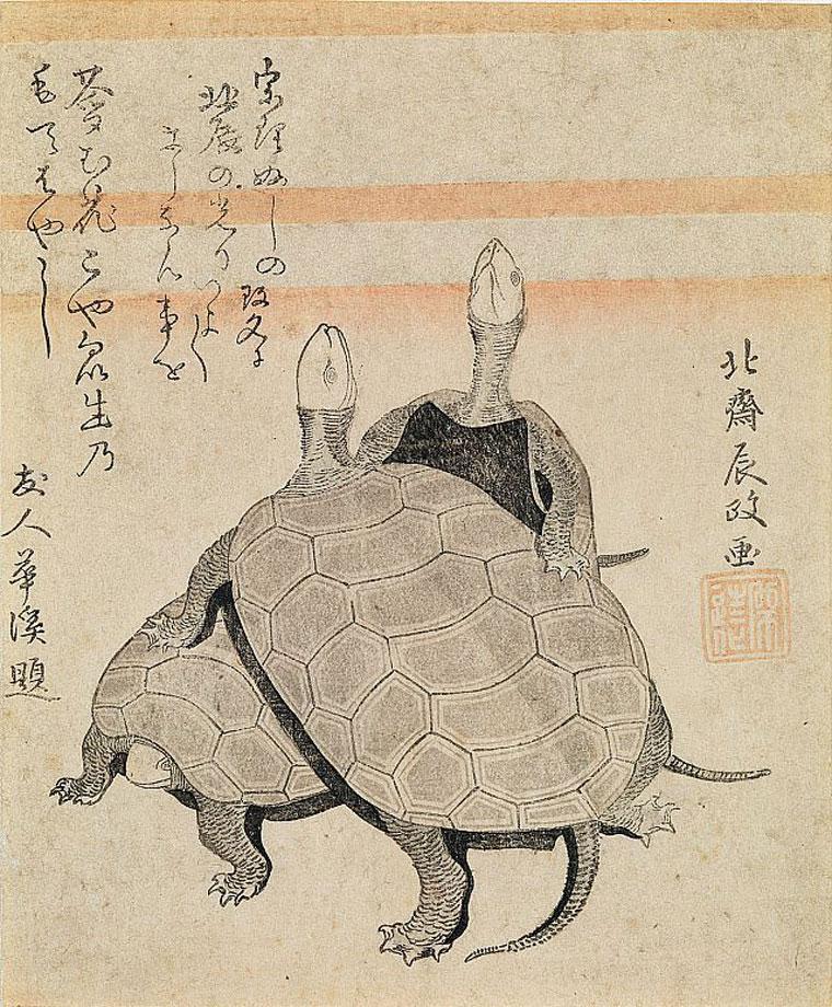 葛飾北斎「亀図」画像