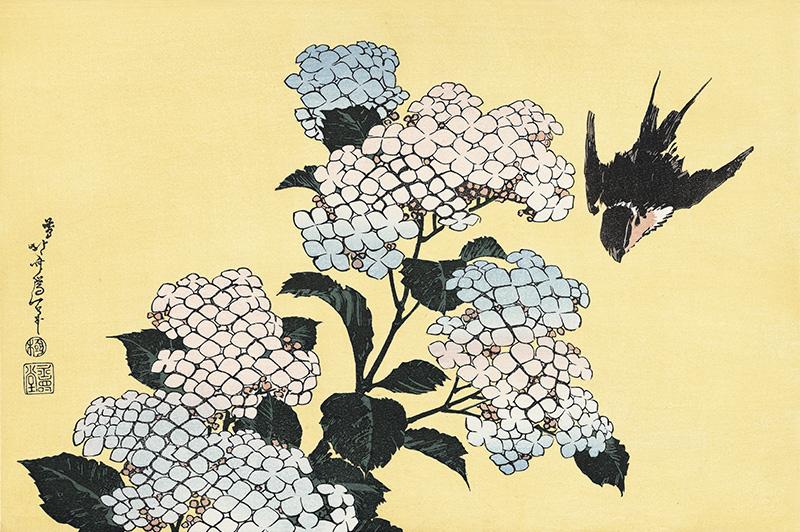作品名:花鳥版画「紫陽花に燕」 作者:葛飾北斎 時代:江戸時代・19世紀 所蔵:東京国立博物館