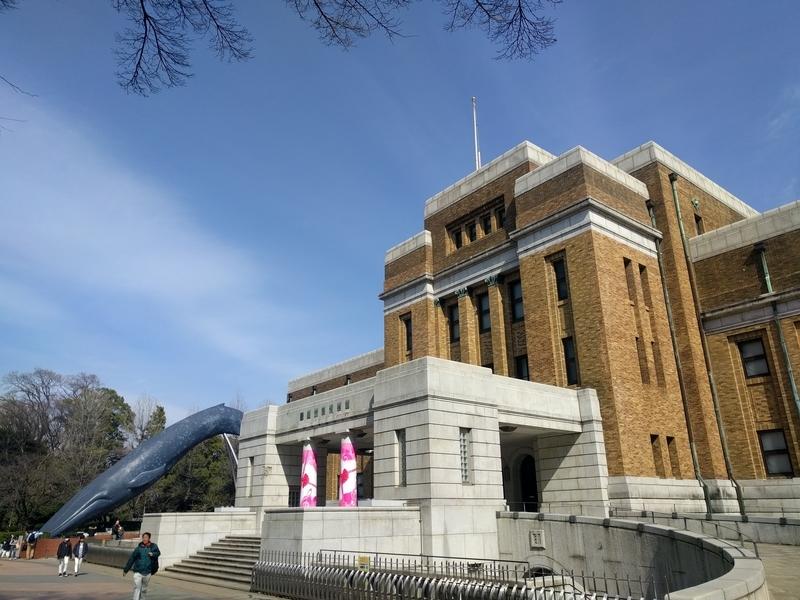 国立科学博物館の写真