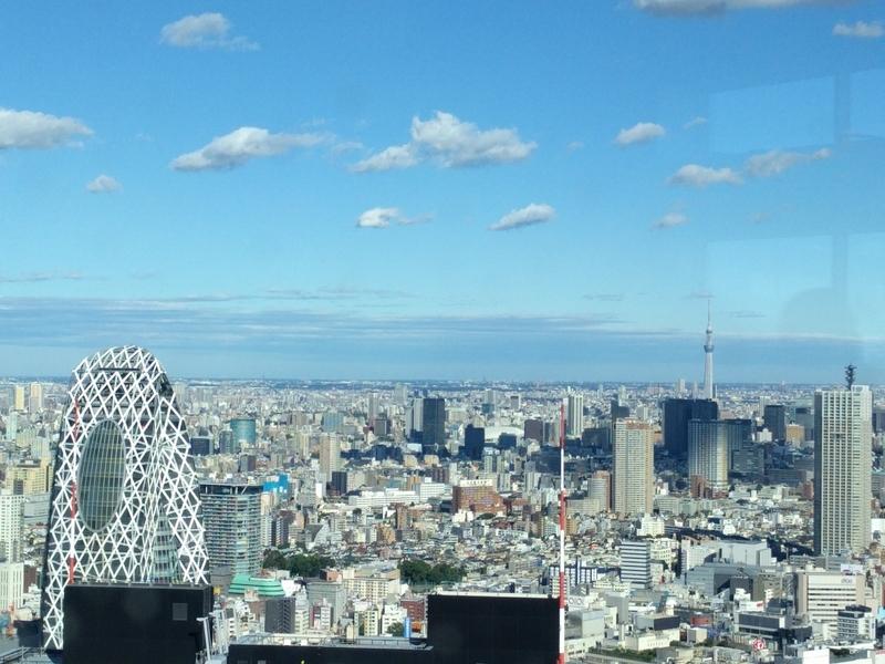 東京都庁の展望台からの風景