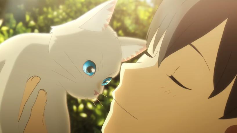 映画『泣きたい私は猫をかぶる』