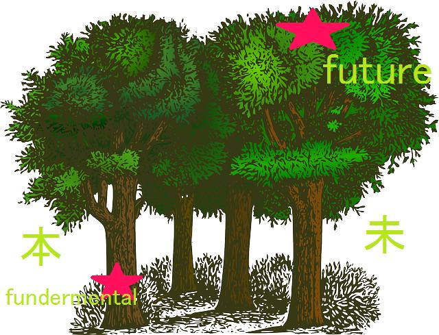 fundamental and future