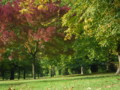 [UK2009]Hyde Park