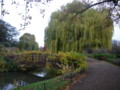 [UK2009][London]Regents Park