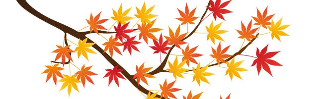 葉がカラフルでかわいいもみじイラスト素材(無料)