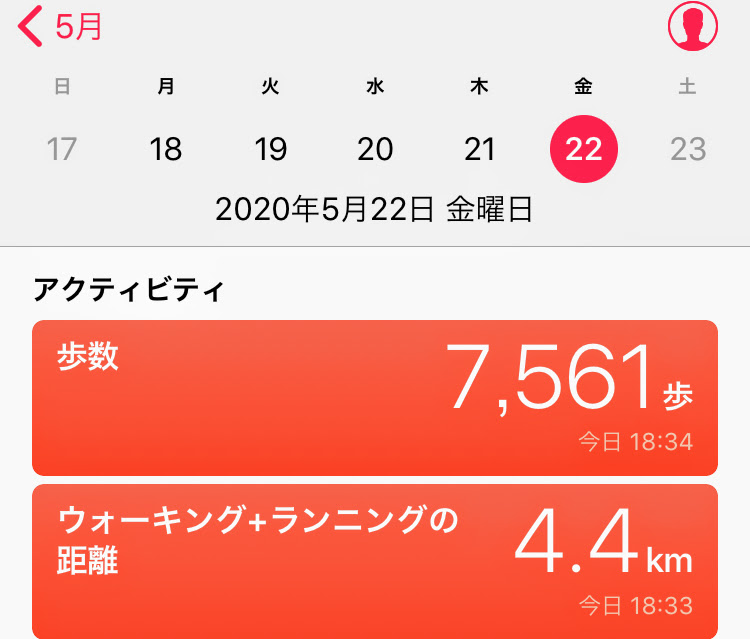 f:id:arai-gumako:20200522233028j:plain