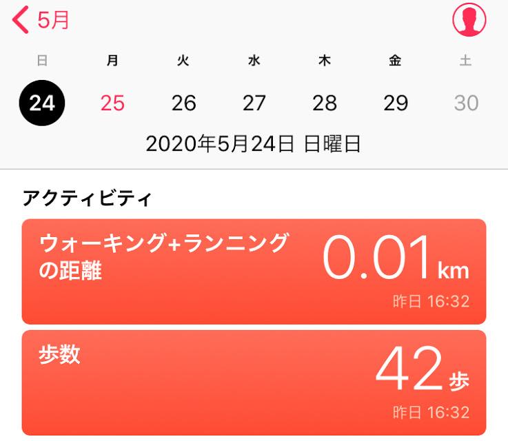 f:id:arai-gumako:20200525002930j:plain