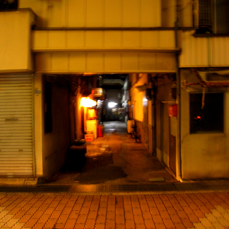 f:id:araiyakushi:20191220110411j:plain