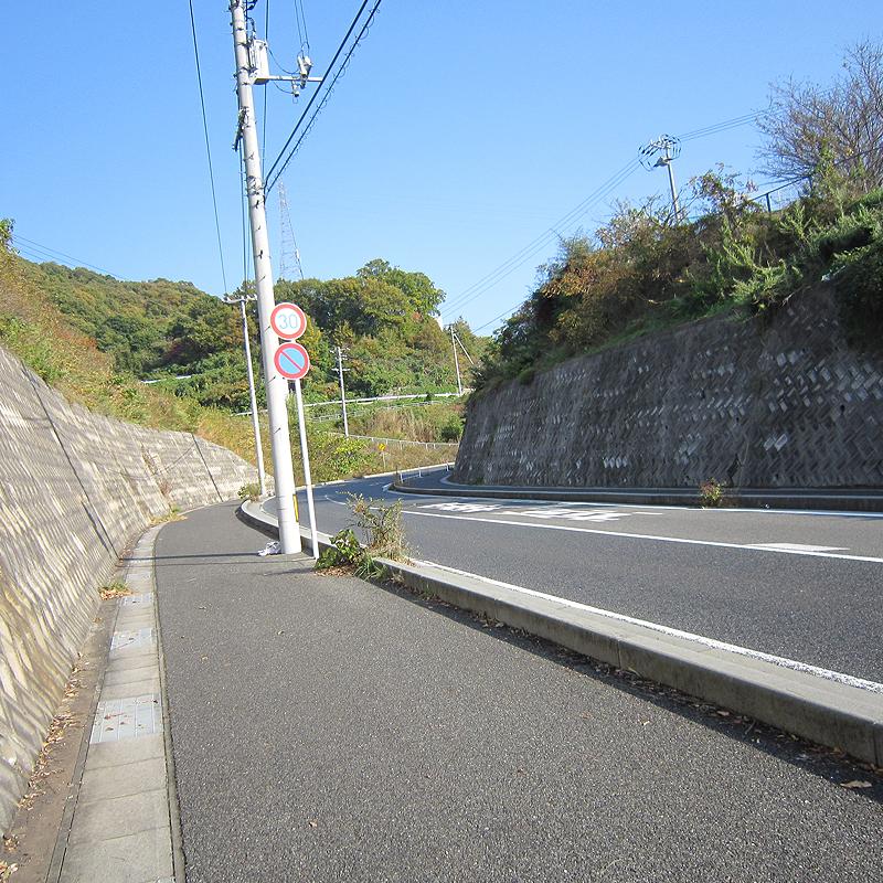 f:id:araiyakushi:20191220110731j:plain