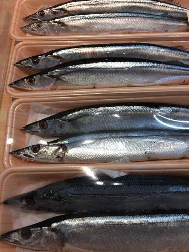 サンマ 魚 スーパー
