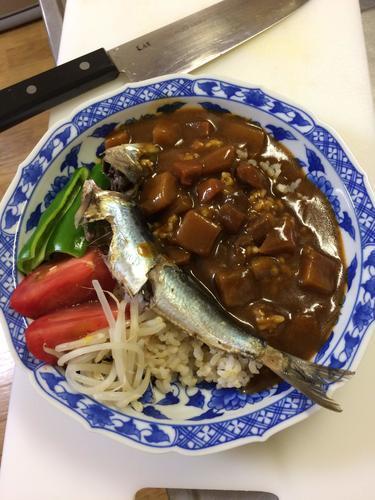 カレー 料理 イワシ 魚
