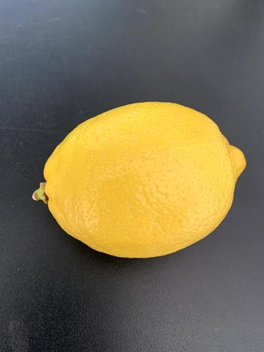 レモン 檸檬