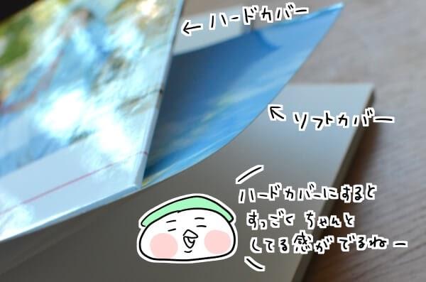 f:id:arakawalove:20200803212838j:plain