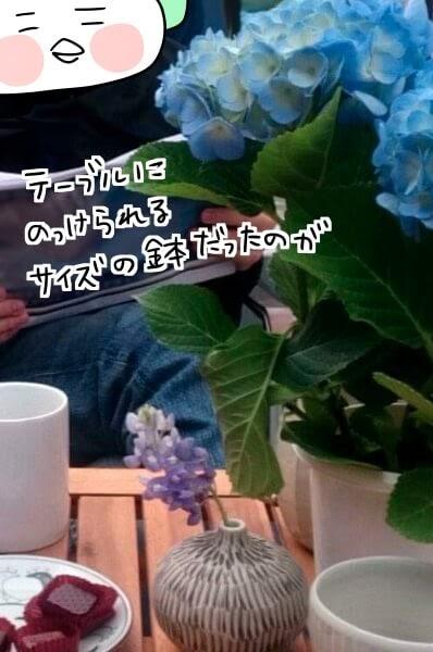 f:id:arakawalove:20200803220820j:plain