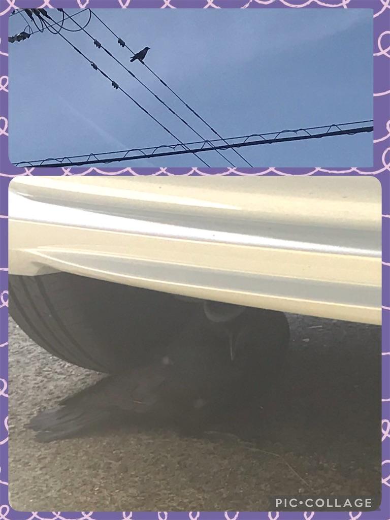 f:id:arakitokoya:20210402170101j:image