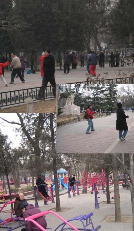 太極拳@朝の広場
