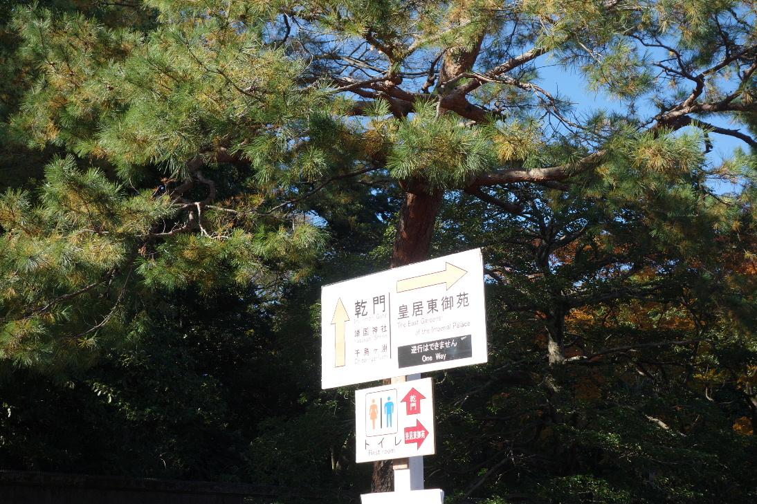 f:id:arashi_golf:20191215213137j:plain