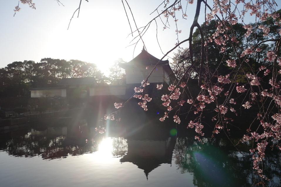 f:id:arashi_golf:20200326232240j:plain