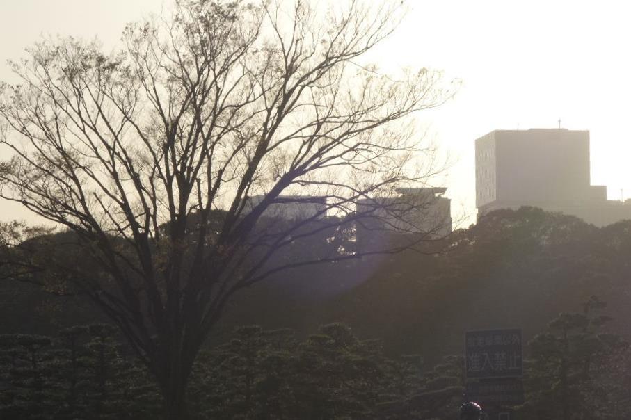 f:id:arashi_golf:20200328235249j:plain