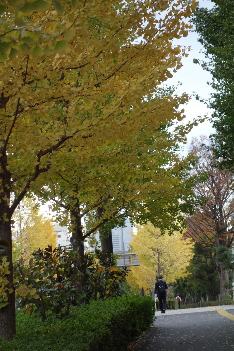 f:id:arashi_golf:20201120222415j:plain