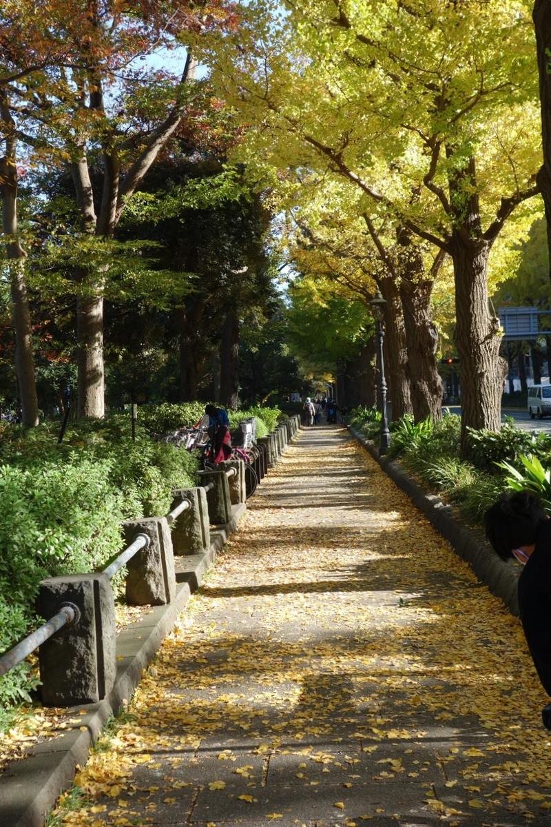 f:id:arashi_golf:20201126232343j:plain