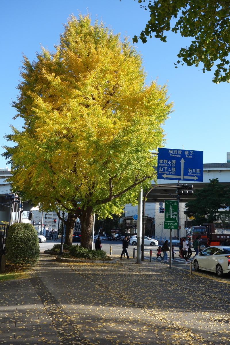 f:id:arashi_golf:20201128221542j:plain