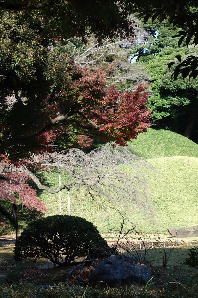 f:id:arashi_golf:20201129191518j:plain