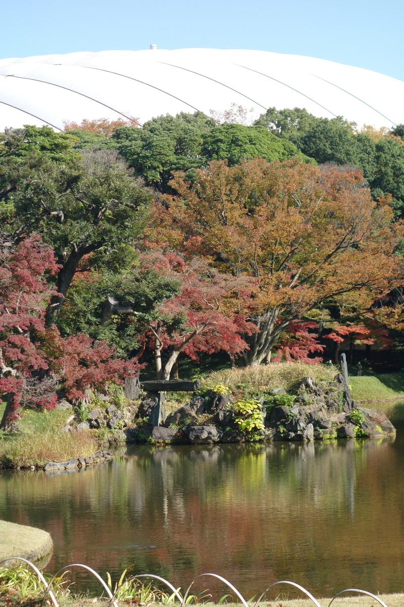 f:id:arashi_golf:20201129192119j:plain