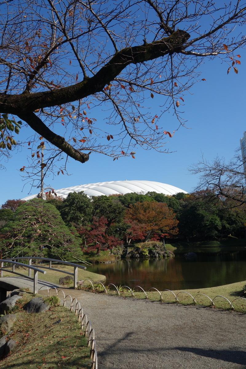 f:id:arashi_golf:20201129192303j:plain