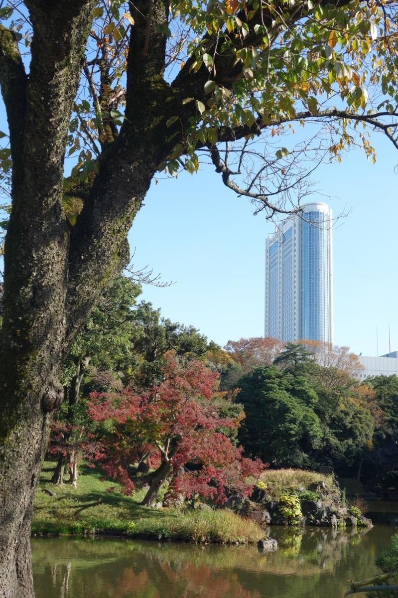 f:id:arashi_golf:20201129205118j:plain