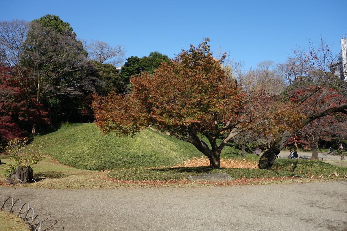 f:id:arashi_golf:20201129210530j:plain