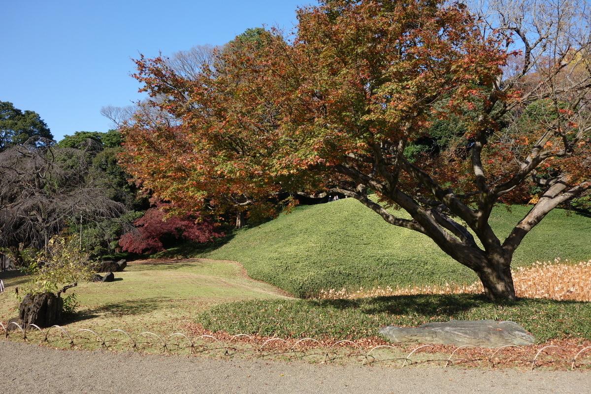 f:id:arashi_golf:20201129210551j:plain