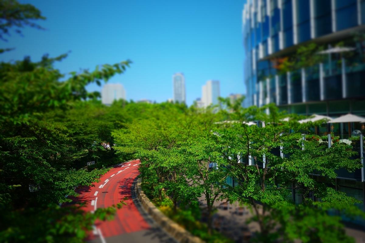 f:id:arashi_golf:20210201213513j:plain