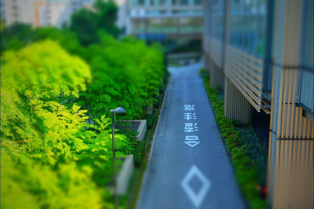 f:id:arashi_golf:20210201213730j:plain