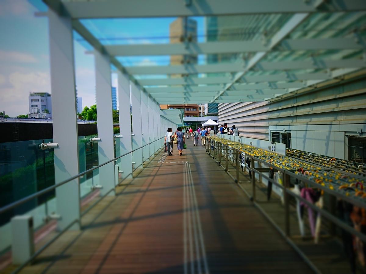 f:id:arashi_golf:20210203002340j:plain