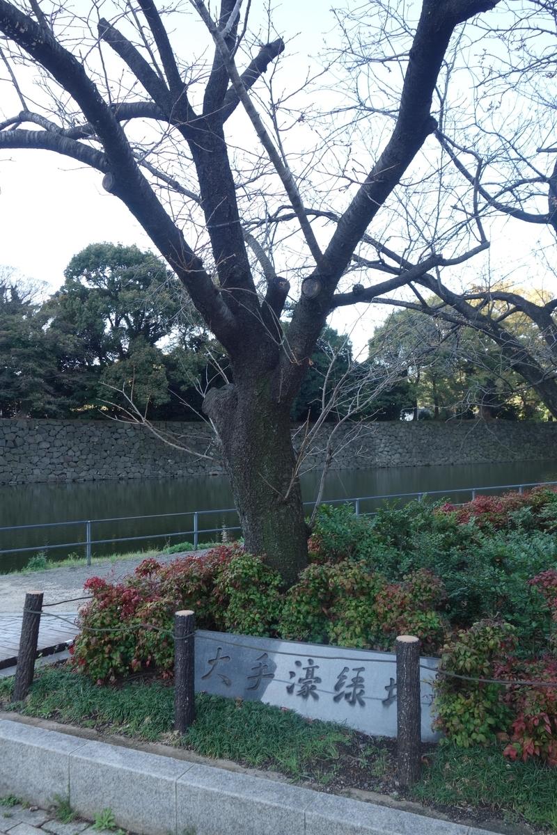 f:id:arashi_golf:20210327175836j:plain