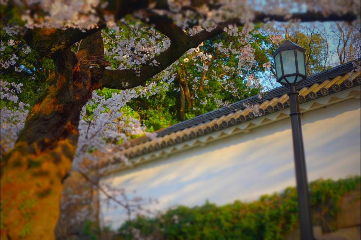 f:id:arashi_golf:20210328143504j:plain