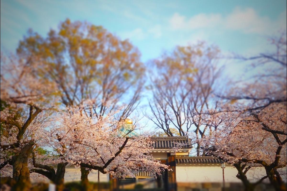 f:id:arashi_golf:20210328143545j:plain